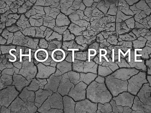 SHOOT-PRIME