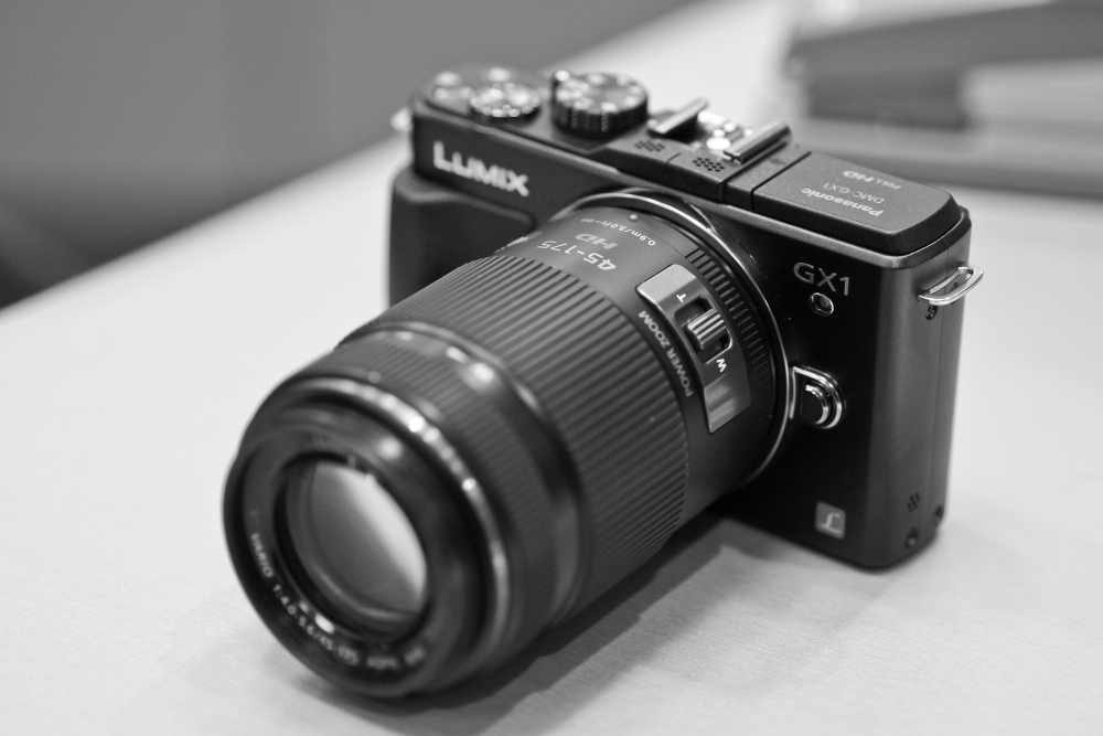 Panasonic GX1 WITH 45/175mm lens